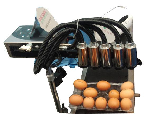 五头鸡蛋喷码机